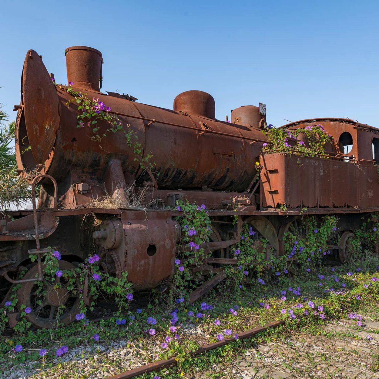urbex-urban-exploration-portugal-train-graveyard-locomotive
