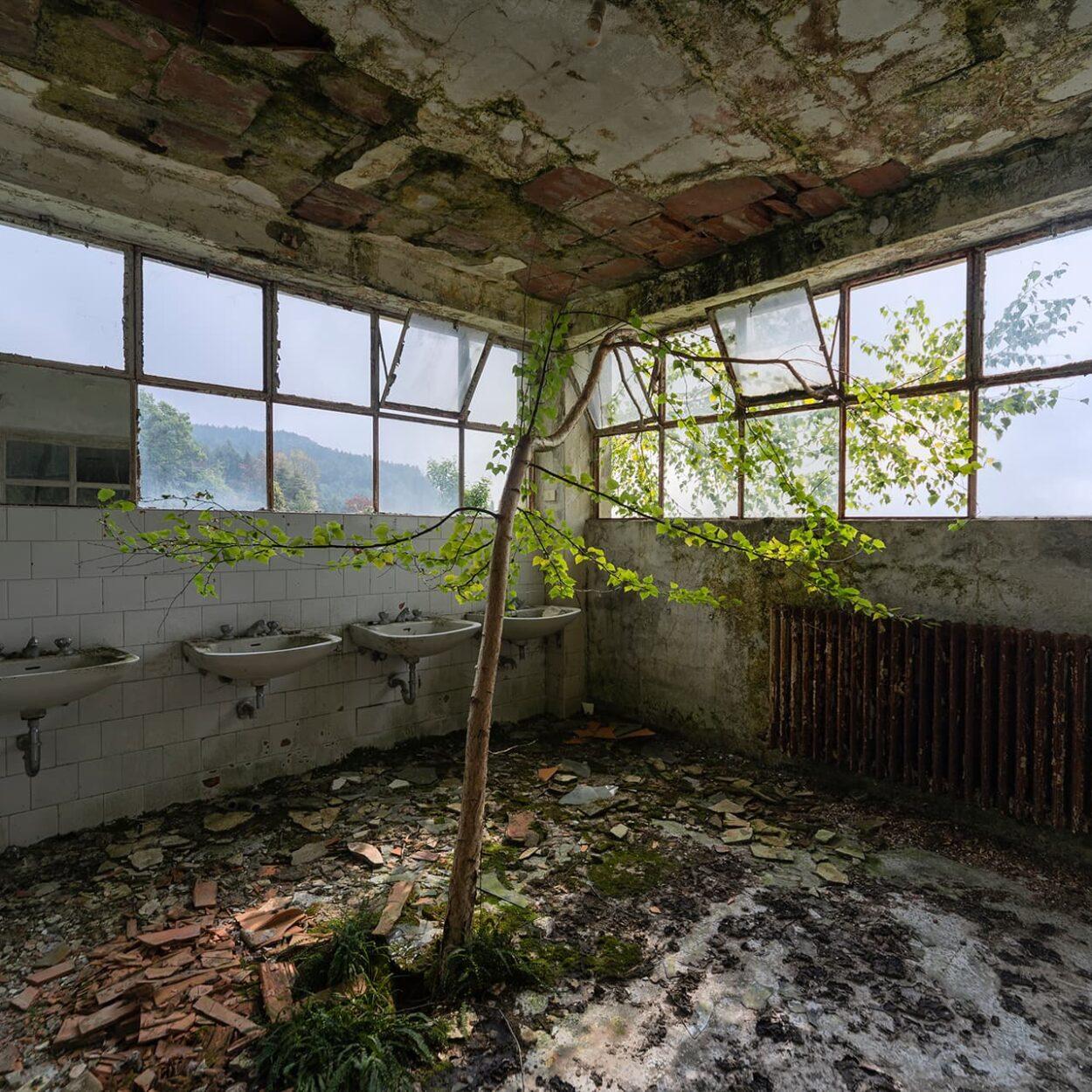 urbex-exploration-italie-red-cross-hospital-nature